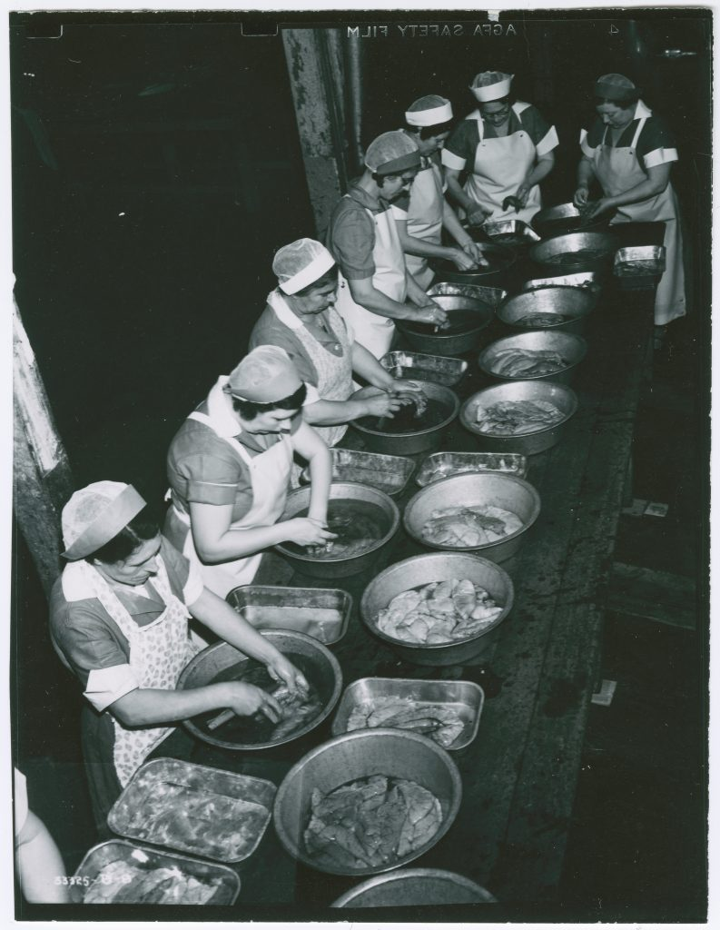 Women preparing fish at cannery, Benicia, Solano County