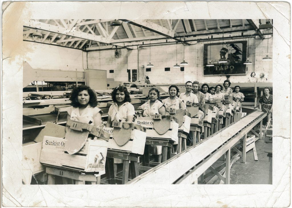 Inez Flores, Sunkist packing assembly line