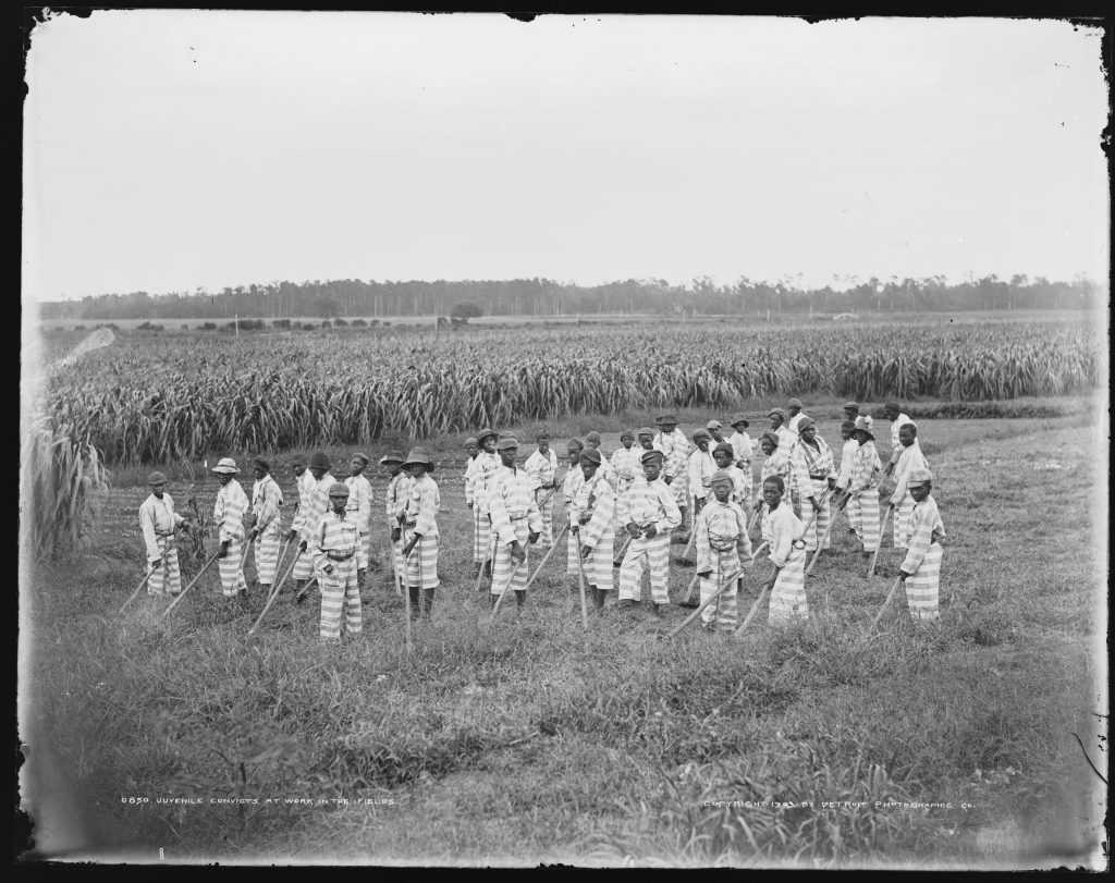 8.11.10 Juvenile convicts at work in the fields