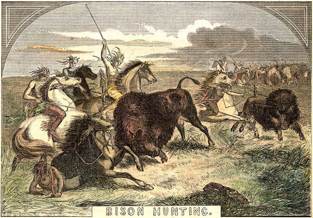 8.4-8.5.6 Bison Hunting