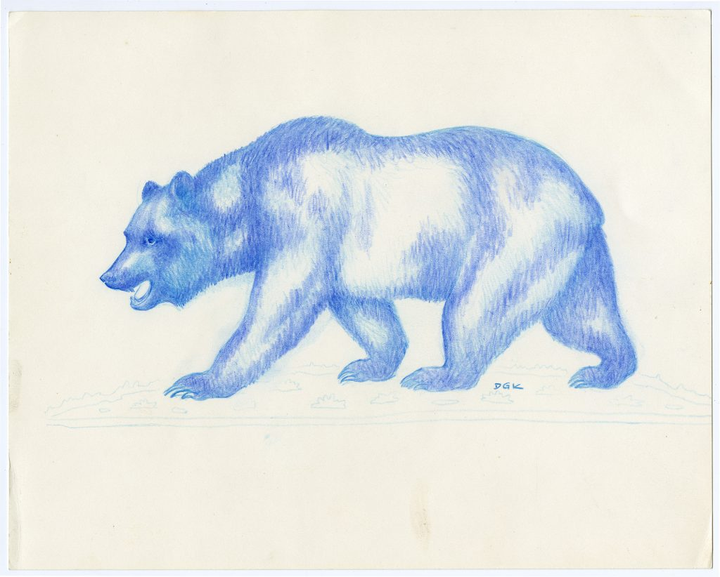 1.3.1b Donald Greame Kelley materials relating to the California Bear Flag design, 1952-1968