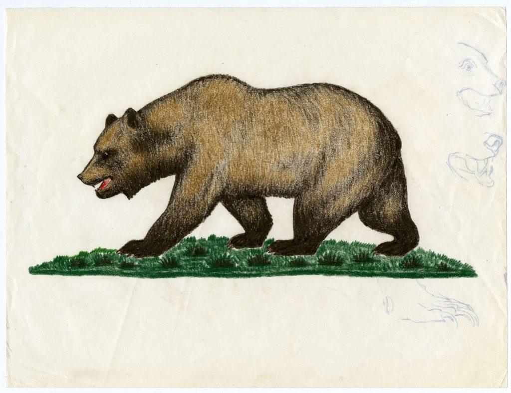 1.3.1c Final California Bear Flag design